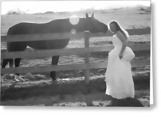 Dress 32 Greeting Card by Betsy Knapp