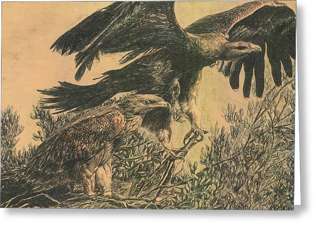 Eagle's Roost Greeting Card