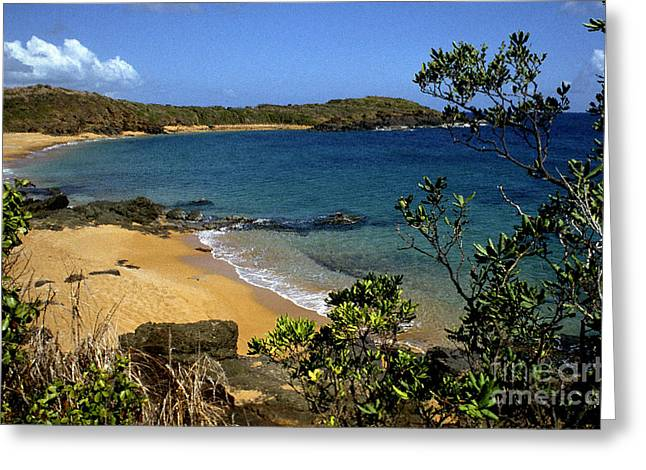 El Convento Beach Greeting Card by Thomas R Fletcher