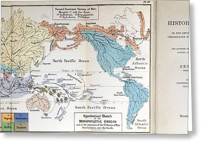 Ernst Haeckel Map Lemuria Human Origins Greeting Card