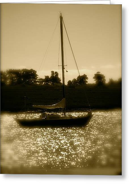 Evening Sail Greeting Card by Jez C Self