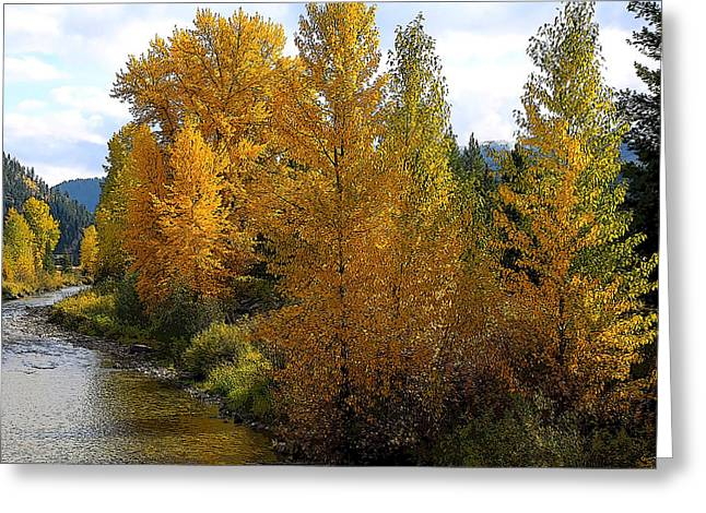 Fall Colors Greeting Card by Steve McKinzie