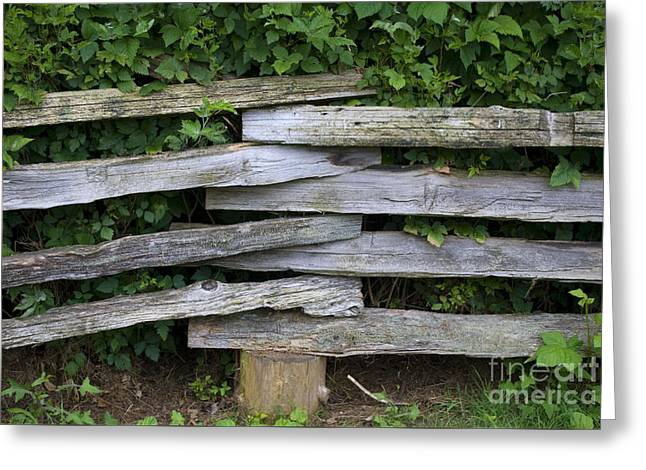 Greeting Card featuring the photograph Fence Weave by Bill Thomson