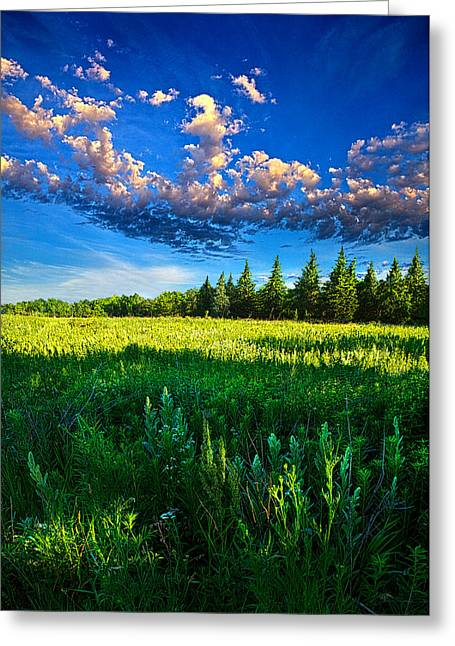 Fields And Dreams Greeting Card by Phil Koch