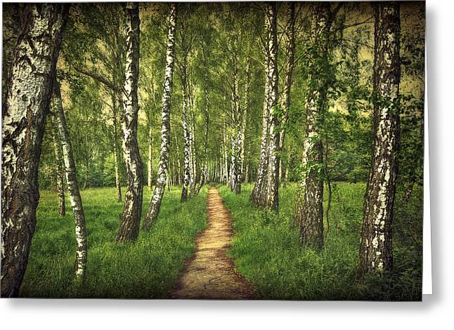 Find Your Way Back Home Greeting Card by Evelina Kremsdorf