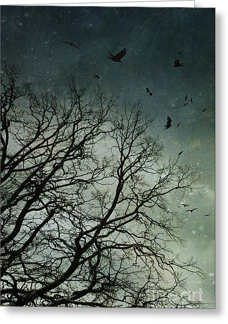 Flock Of Birds Flying Over Bare Wintery Trees Greeting Card by Sandra Cunningham