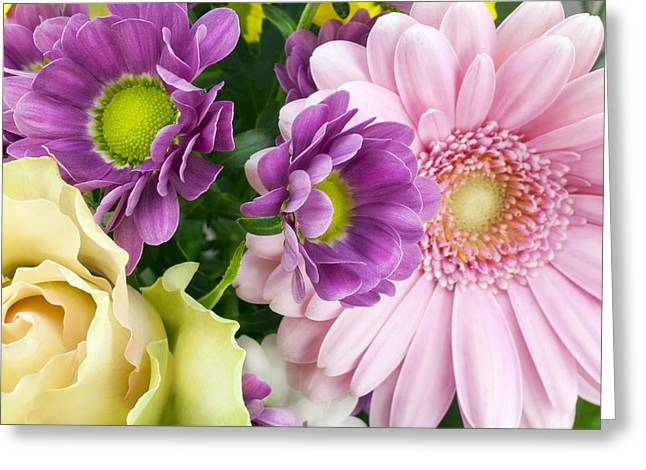 Floral Spring Background Greeting Card