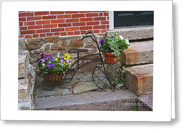 Greeting Card featuring the photograph Flower Bicycle Basket by Val Miller