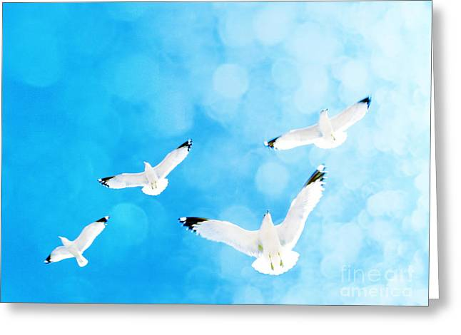 Greeting Card featuring the photograph Fly Free by Robin Dickinson