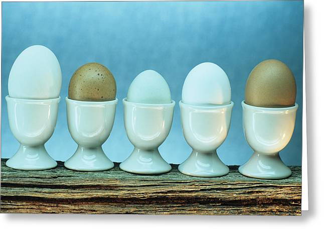 Fresh Eggs Greeting Card by David Aubrey