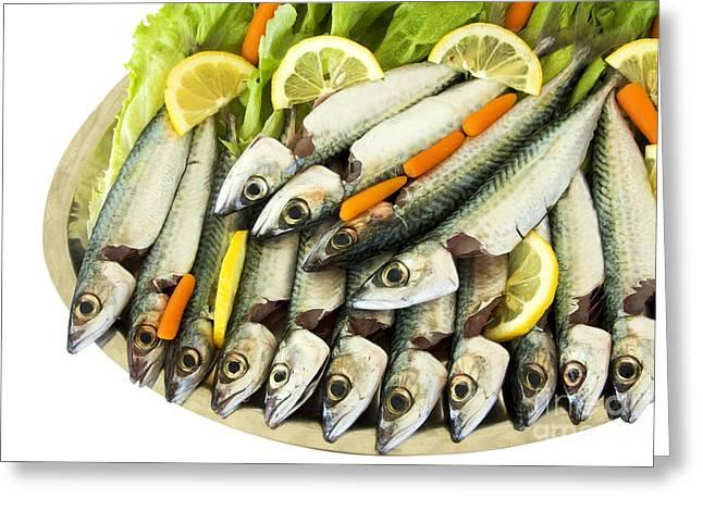 Fresh Uncoocke Fish Greeting Card by Soultana Koleska