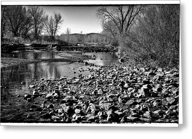 From Under The Bridge Greeting Card by David Patterson
