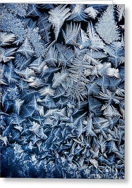 Frost Greeting Card by HD Connelly