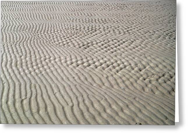 Galveston: Beach Greeting Card by Granger
