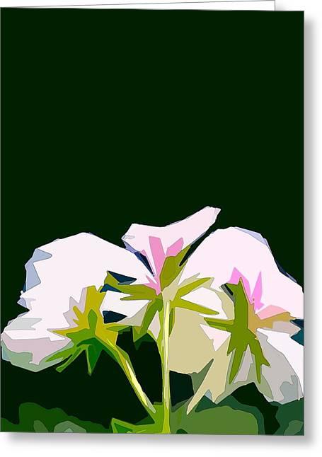 Geranium 3 Greeting Card by Pamela Cooper