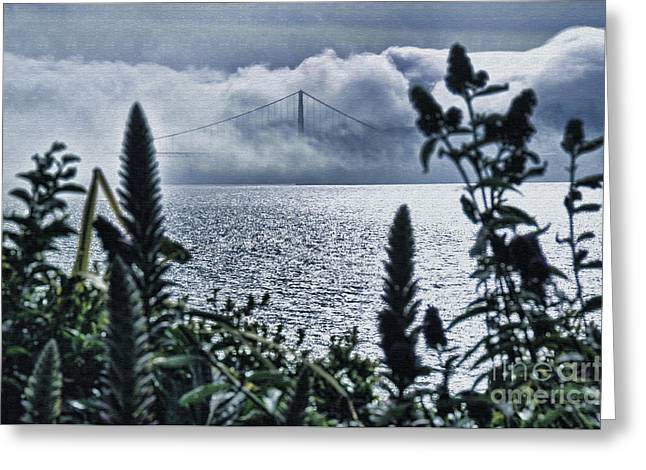 Greeting Card featuring the photograph Golden Gate Bridge - 1 by Mark Madere