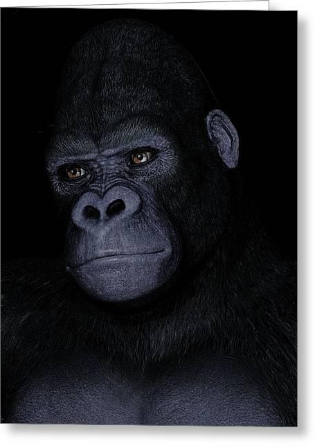 Gorilla Portrait Greeting Card by Maynard Ellis