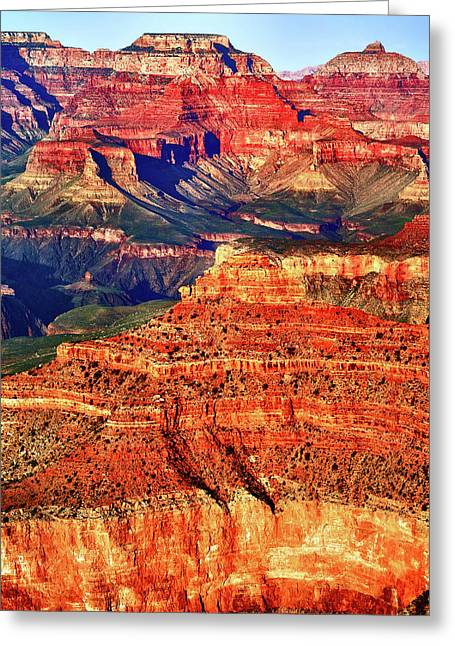 Grand Canyon National Park Greeting Card by James Bethanis