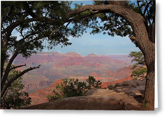 Grand Canyon Greeting Card by Olga Vlasenko