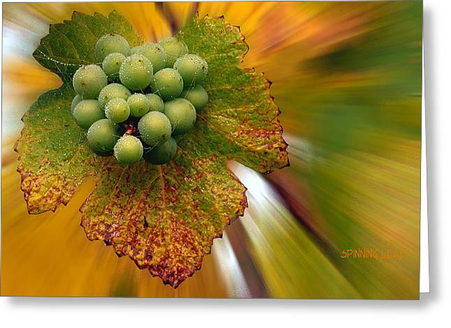 Grapes Greeting Card by Jean Noren