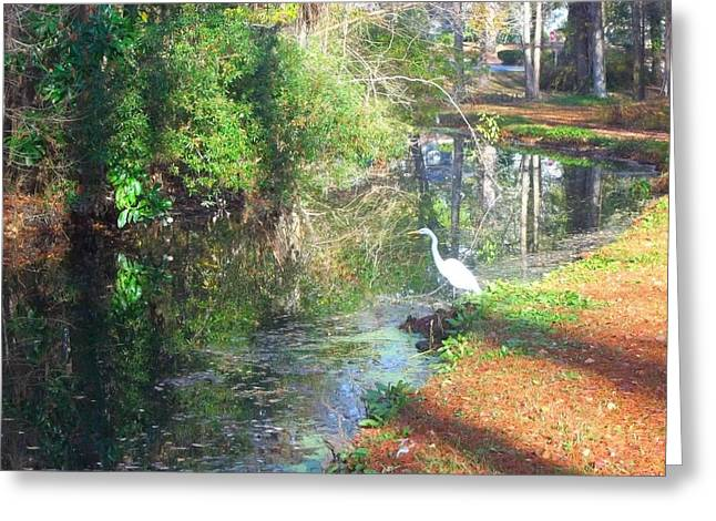 Greenfield Park Greeting Card by Jessica Thomas