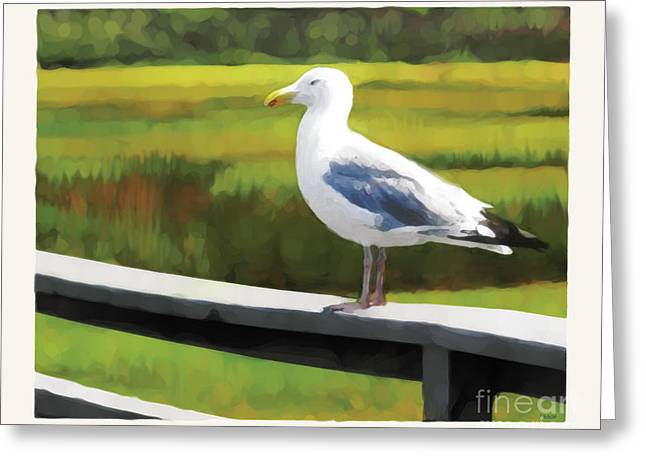 Greeting Card featuring the digital art Gull One by David Klaboe