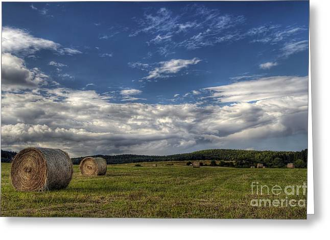 Haymaking Time Greeting Card by Michal Boubin