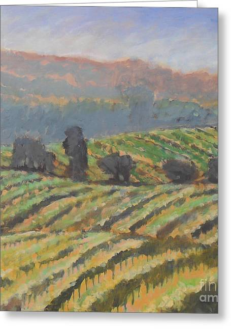 Hillside Vineyard Greeting Card by Kip Decker
