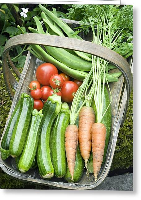 Home-grown Organic Vegetables Greeting Card