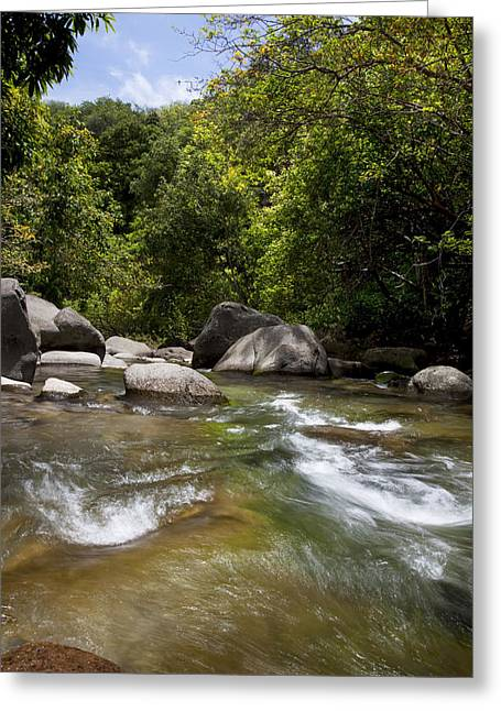 Iao River Greeting Card by Jenna Szerlag