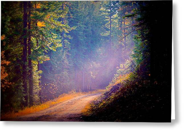 Into The Light Greeting Card by Donna Duckworth