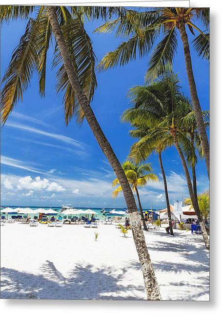 Isla Mujeres Beach Scenic  Greeting Card by George Oze