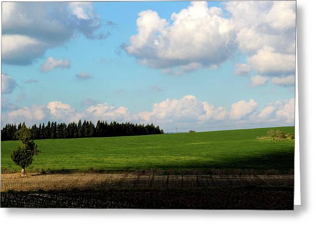 Israel's Countryside Greeting Card by Gal Ashkenazi