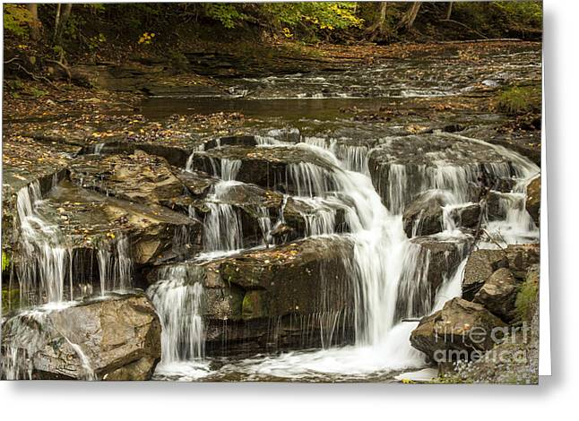 Java Falls In Autumn Greeting Card by Darleen Stry