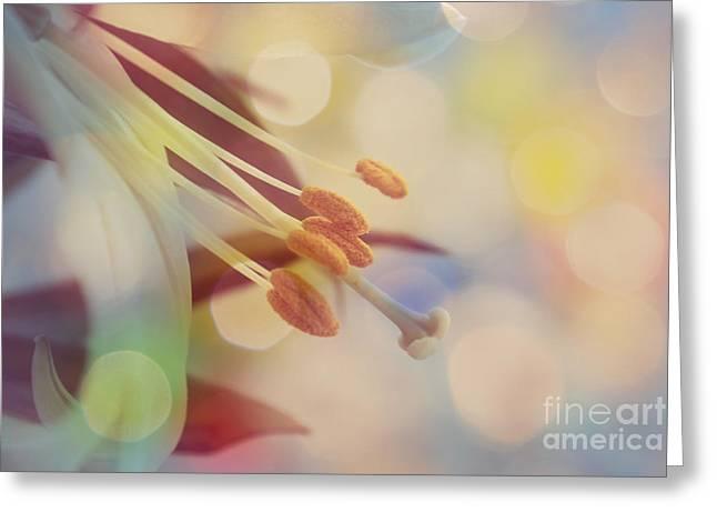 Joyfulness Greeting Card by Aimelle