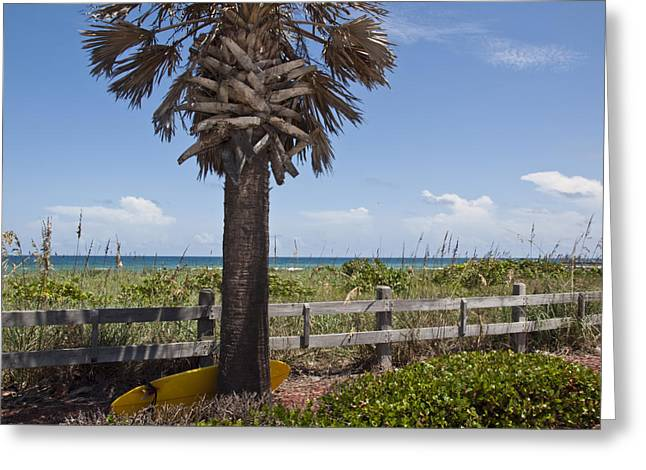 Juan Ponce De Leon Landing Site In Florida Greeting Card by Allan  Hughes