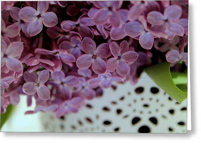 Lilac Greeting Card by Marica Jukic