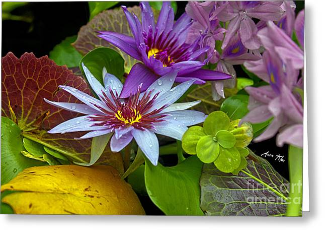 Greeting Card featuring the photograph Lilies No. 32 by Anne Klar