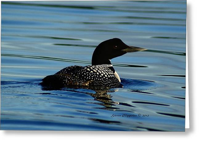 Greeting Card featuring the photograph Loon 2 by Steven Clipperton