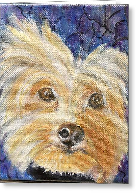 Louie Greeting Card by Maureen Pisano