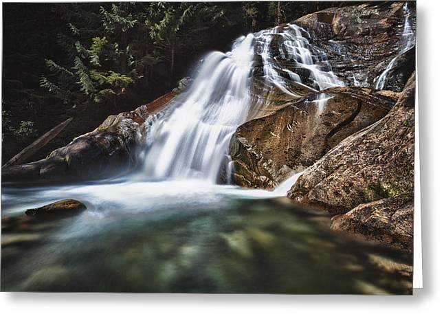 Lower Cascades Of Malachite Creek Greeting Card by A A