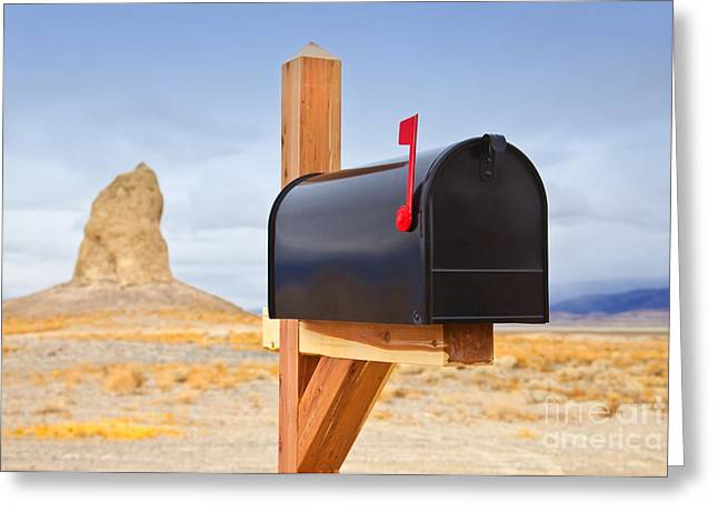 Mailbox In Desert Greeting Card by David Buffington