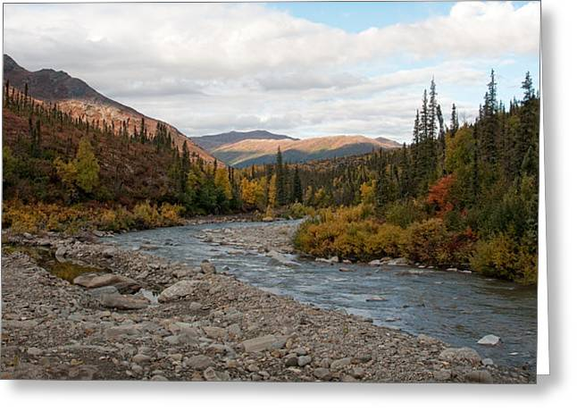 Greeting Card featuring the photograph Marion Creek by Gary Rose
