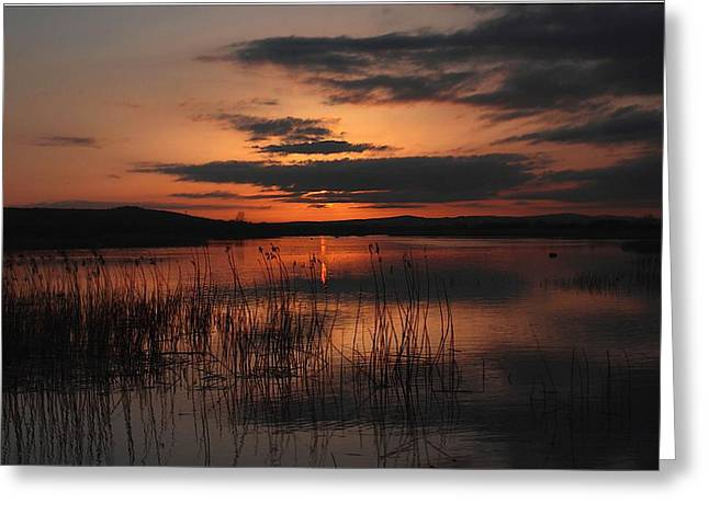 Menlo Sunset Greeting Card