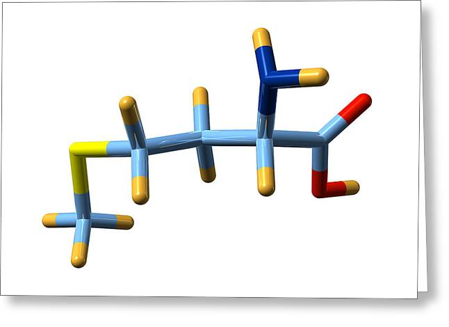 Methionine, Molecular Model Greeting Card