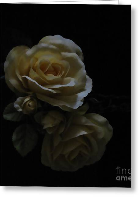 Midnight Roses Greeting Card by Cedric Hampton