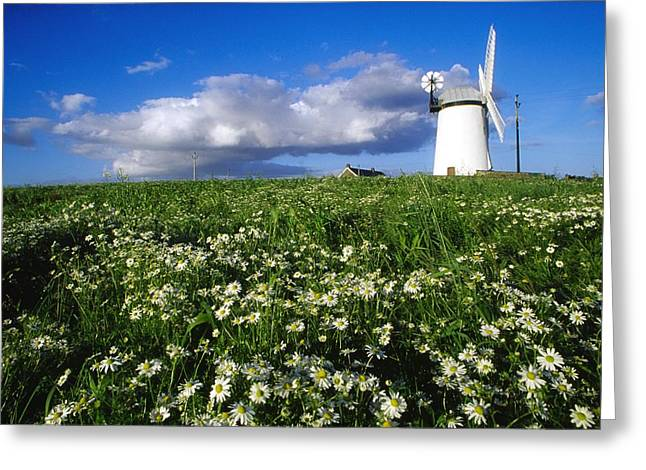 Millisle, County Down, Ireland Greeting Card by Richard Cummins