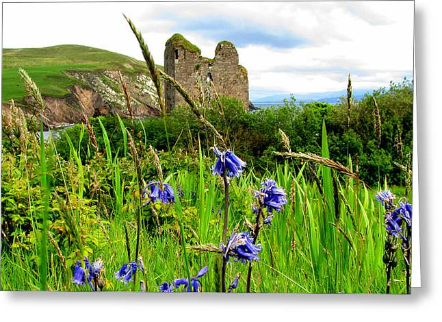 Minard Castle Greeting Card by Barbara Walsh