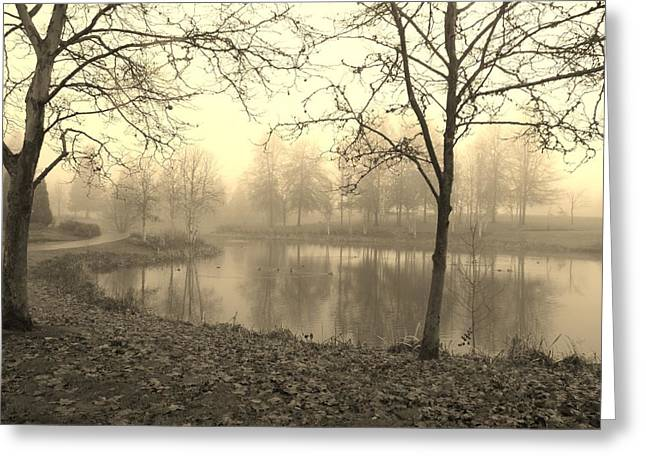 Mist Greeting Card by Amy Norden