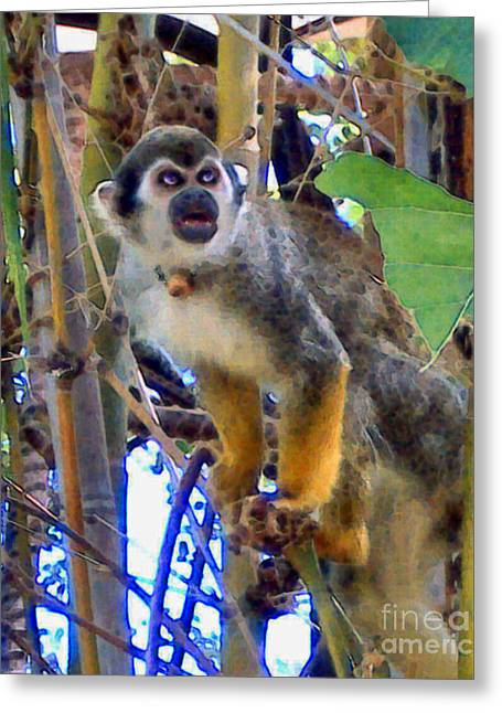 Monkeyshines Greeting Card